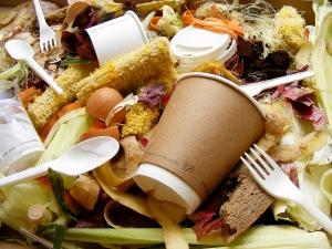 Vegware_compost_1001_foodwaste